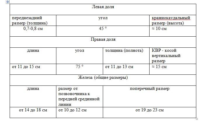 Показатели нормальных размеров печени