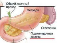 Ноет поджелудочная железа после еды